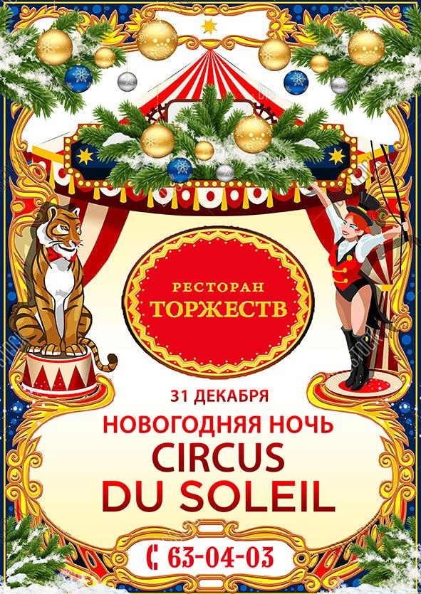 Новогодняя ночь Du Soleil